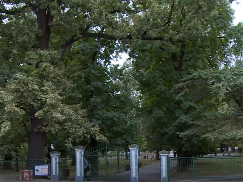 Gradski park u Bijeljini