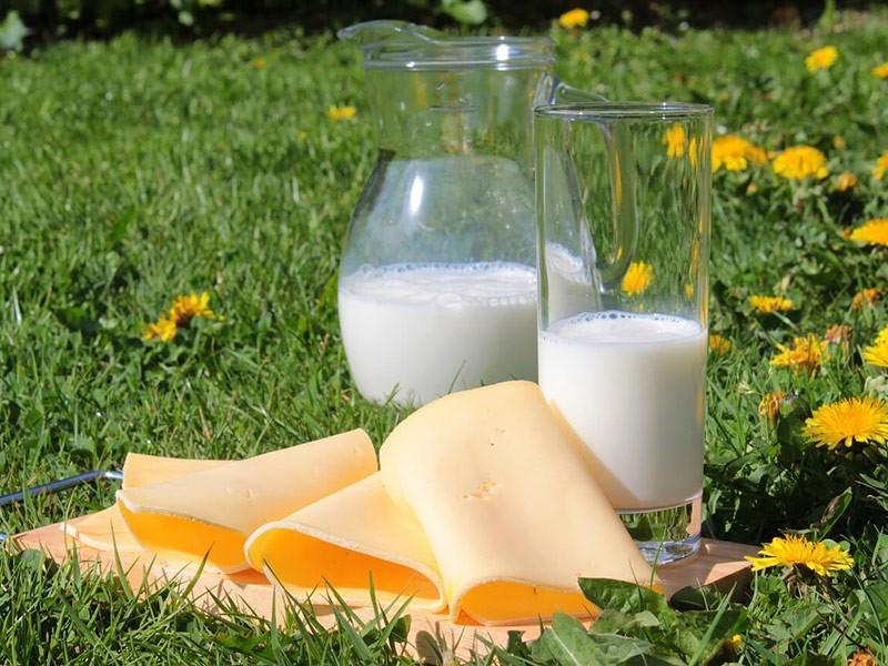 Uloga i značaj kalcijuma u organizmu