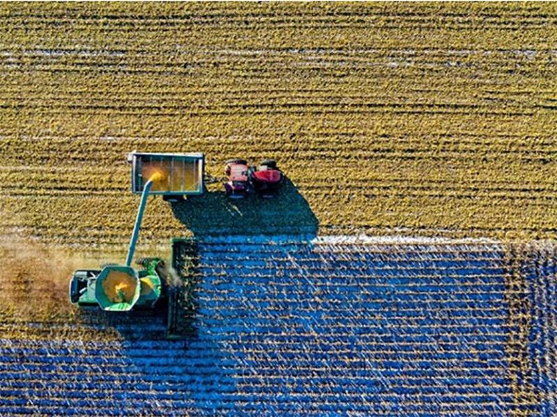Kako poboljšati kvalitet i plodnost zemljišta uz pomoć mineralnih azotnih đubriva