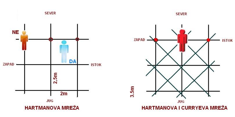Hartmanova mreža