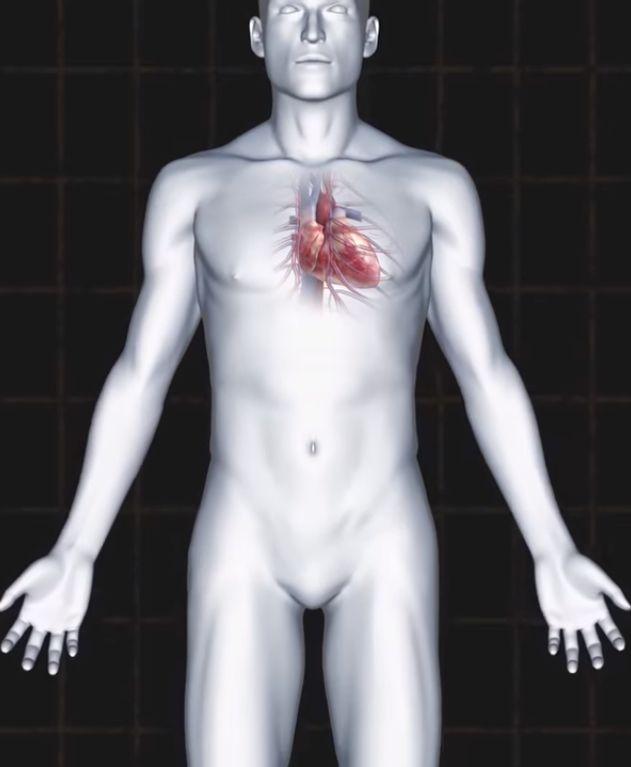Vase zdravlje zavisi od vaseg srca!